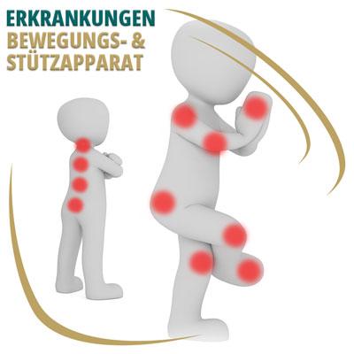 Erkrankungen des Bewegungs- und Stützapparates