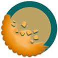 Cookie Rezeptbuch - Datenschutzeinstellungen